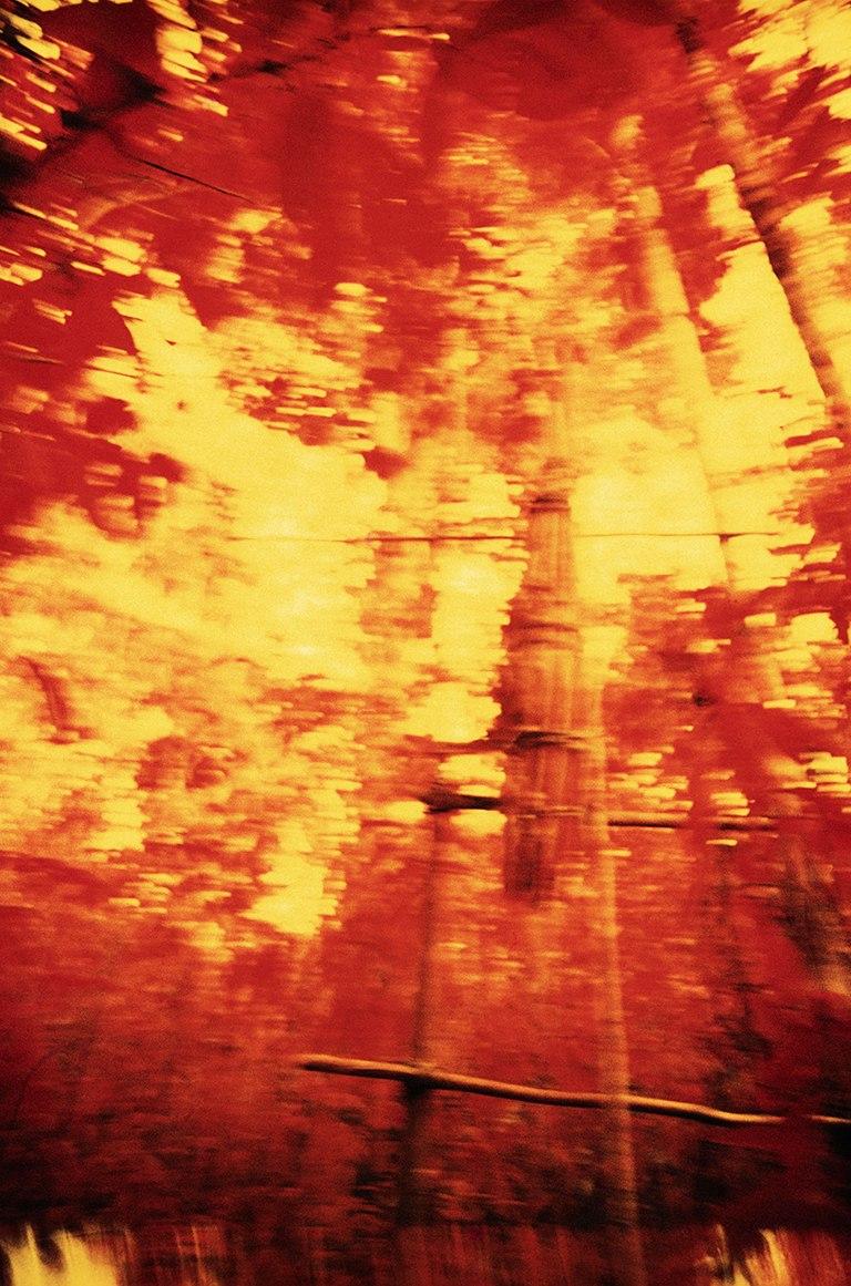 Cistelles funeràries, pel·lícula infraroja. Catrimani, Roraima, 1976. © Claudia Andujar