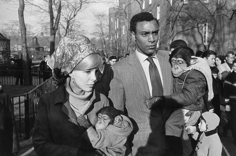 Garry Winogrand Central Park Zoo, New York City, 1967